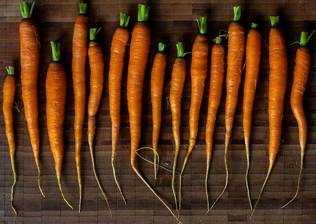 carrots-5208385_640.jpg